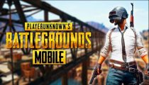 PlayerUnknown's Battlegrounds game crashes after the logo appears