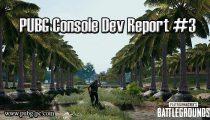PUBG Console Dev Report #3