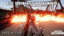 The Best Throwables in PUBG Mobile