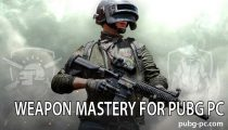 Weapon Mastery for PUBG PC